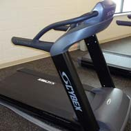 Cybex Treadmill (there are 2)